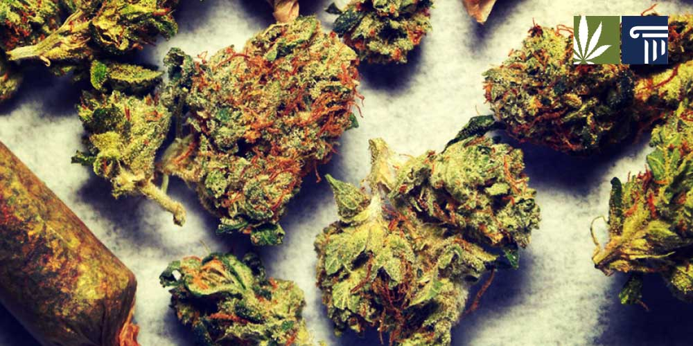 Wisconsin voters want legal marijuana