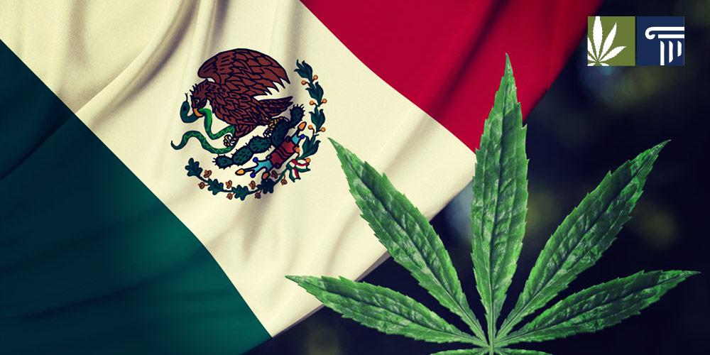 mexico marijuana legalization bill