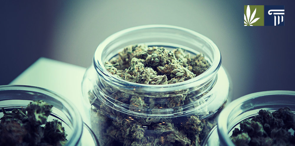 bill research cannabis