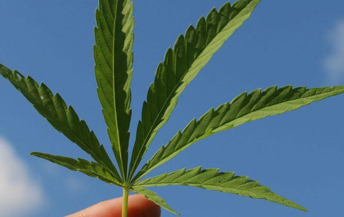 Indiana marijuana reform 2021