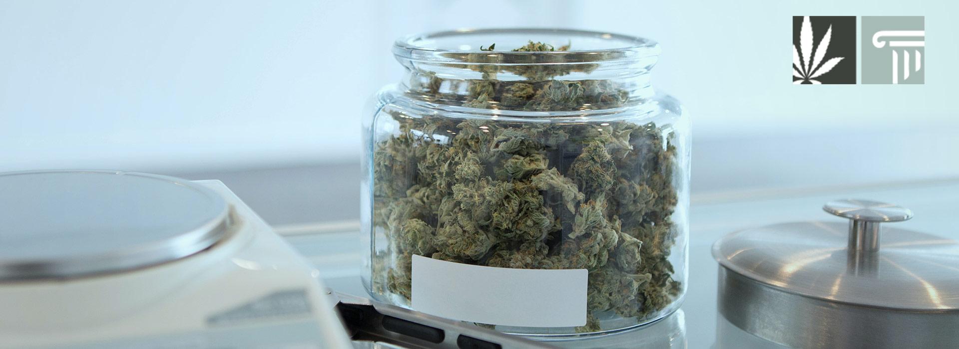 cannabis legal new york