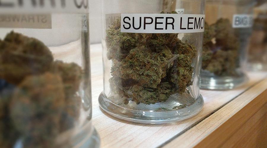 marijuana dispensary age law compliance