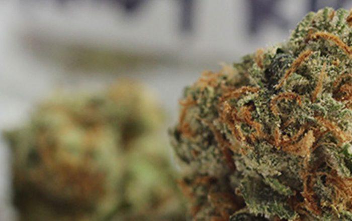 California Marijuana Tax Revenue to Fund Programs That Repair Harms of War on Drugs