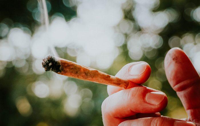 Idaho marijuana legalization campaign for 2022 ballot