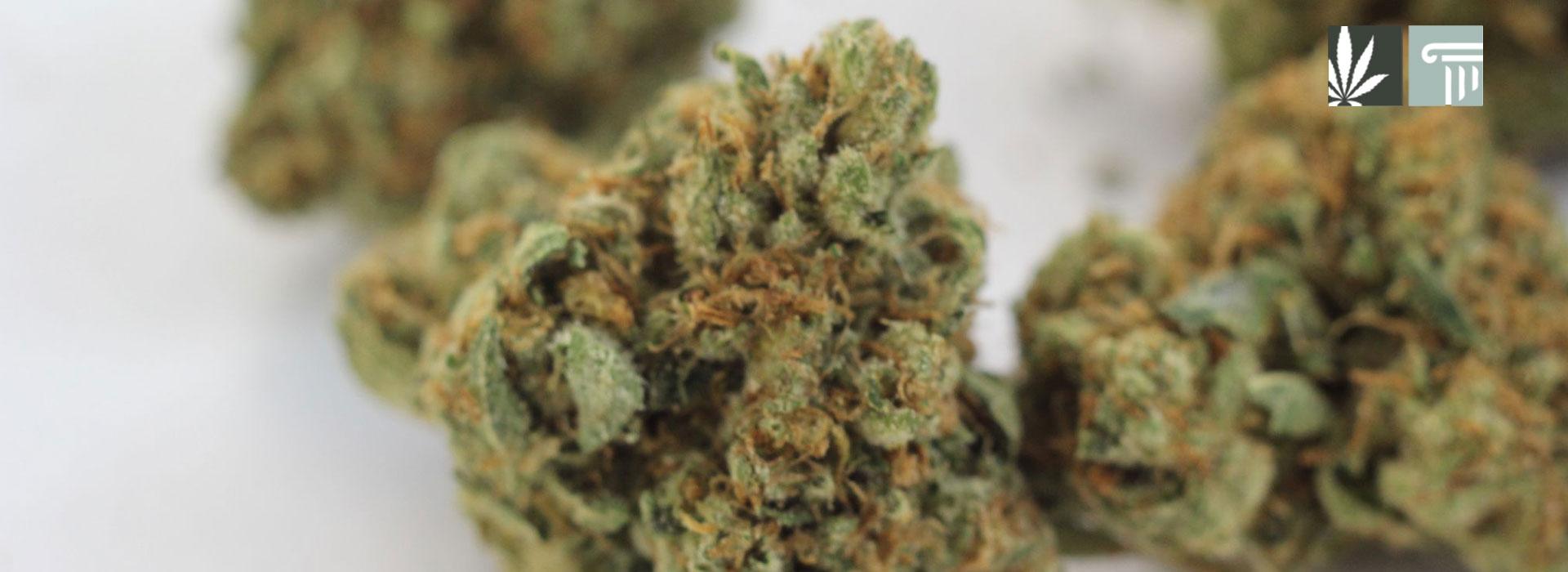 virginia legalizes marijuana