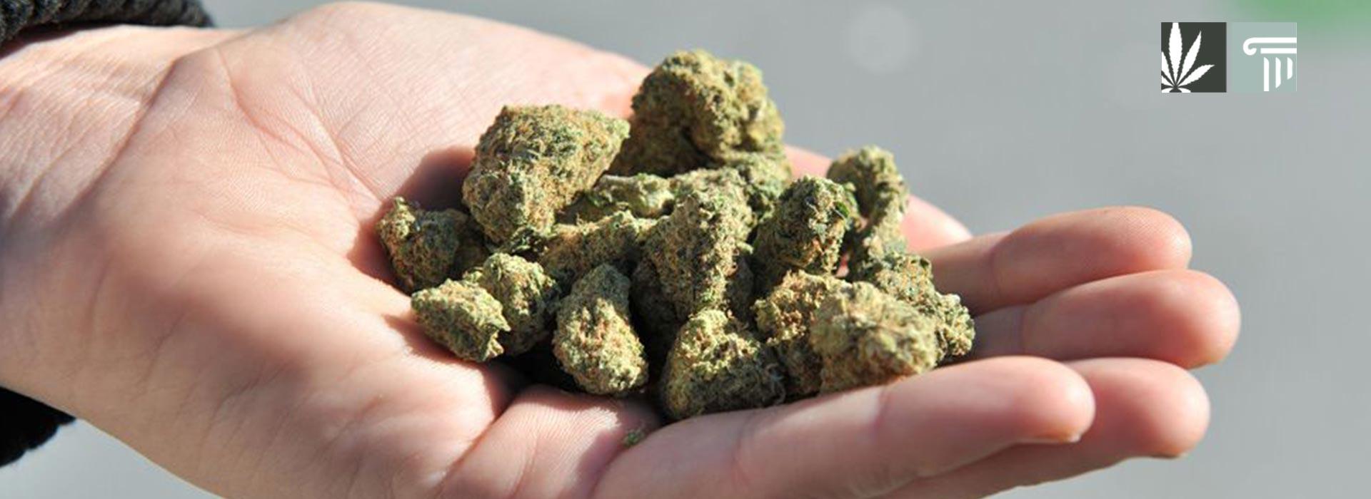 louisiana decriminalization