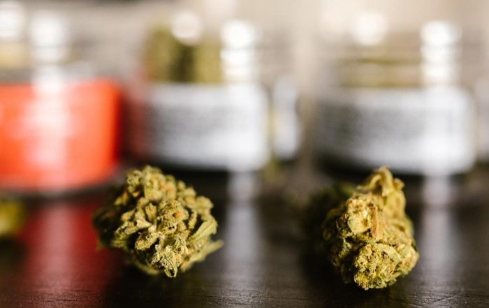 connecticut patients grow medical marijuana at home